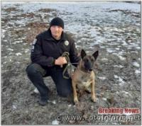 На Кіровоградщині службовий пес допоміг затримати злочинця