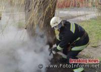 Минулої доби на Кіровоградщині загасили 4 пожежі