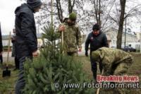 У Кропивницькому відбувся ялинковий флешмоб