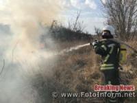 На Кіровоградщині ліквідовано 20 пожеж сухої рослинності та сміття