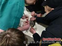 На Кіровоградщині рятувальники допомогли зняти з пальця дитини каблучку