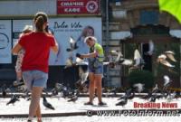 Кропивницький: у центрі міста містяни годують голубів