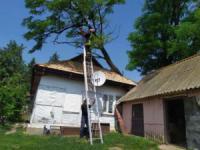 На Кіровоградщині рятувальникам довелося розпилювали та прибирали аварійні дерева