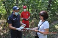 На Кіровоградщині у лісовому масиві провели спільний рейд