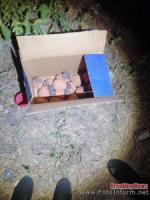 У Кропивницькому на вулиці знайшли близько 20-ти кг ртуті