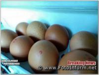 У Кропивницькому кидатимуться яйцями