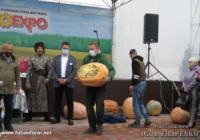 Як у Кропивницькому вибирали найбільшого гарбуза
