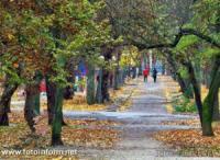 Останній осінній вихідний у Кропивницькому