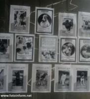 У Кропивницькому для дітей бібліотекарі провели «хвостату» виховну годину