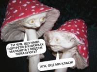 Дві людини померли від ботулізму в Україні з початку року