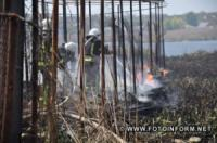 У Кропивницькому рятувальники ліквідували займання очерету на Лелеківці