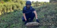 На Кіровоградщині знову знайшли авіаційну бомбу ФАБ-50