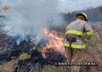 На Кіровоградщині виникло 5 пожеж сухої рослинності та сміття на відкритій місцевості